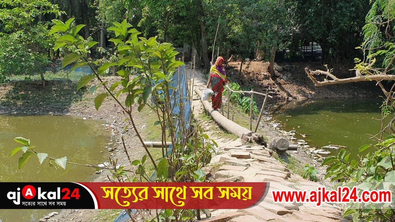 মরণফাঁদ বেনাপোল সাদিপুর পূর্ব পাড়ার যাতায়াতের একমাত্র রাস্তাটি