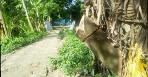 তালায় সরলতায় ফেঁসে যাচ্ছেন হাকিম শেখ